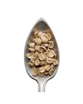 Santos Alta Mogiana Ny2  green coffee